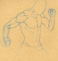 male anatomy sketches 02 by XxragnoraukxX