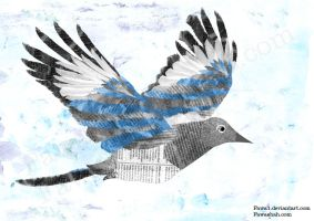 Magpie by Fawa1