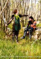 Dragon Age - Frolic Time by freltana