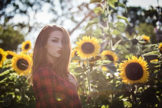 sunflower by BloodSuccubus