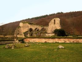 Old: Ruins of Alvastra Abbey II by Photopathica