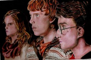 Harry Potter Trio by Fajralam