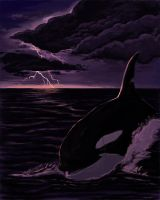The Stormbringer by maui-dolphin