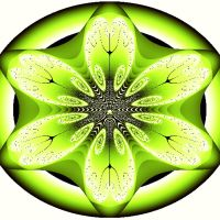 Squeezing a Fractal Lime by Urceola