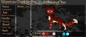 WDS LightningClan Copperpaw Ref :OLD: by MistDapple