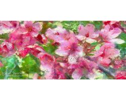 Spring Impressions 7 by love1008