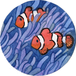 Clownfish by agataylor