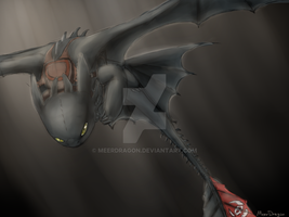 Toothless by MeerDragon