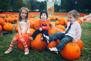 Pumpkin Patch by micahgoulart