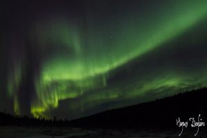 Nightsky of Labrador by Robin-Hugh