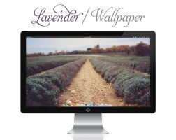 Lavender Wallpaper by bokehlicia