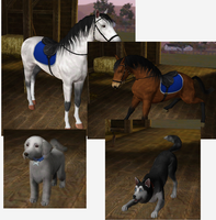 Sims 3 my Pets by MakiTokito