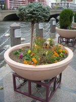 Truckee River Walk Planter by rifka1