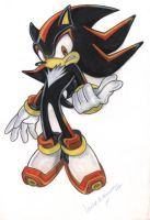 SHADOW THE HEDGEHOG by wildfilly