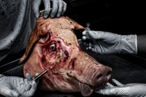 Swine by richeous19