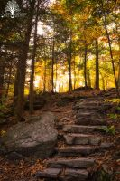 The Path I Must Follow by JustinDeRosa