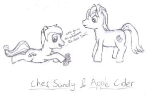 Apple Cider and Chef Sandy by multifish