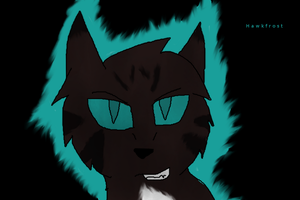 OMG its Hawkfrost again by Willow0000