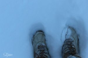 Shoes in snow by Siljaas