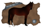 Nevada Import 15 by BRls-love-is-MY-Live