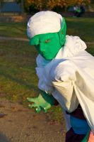 Piccolo Cosplay by Tanpopo89