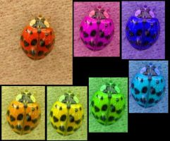 multicolored ladybugs by DanaDay