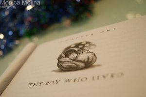 1. The Boy Who Lived. by Noctelux