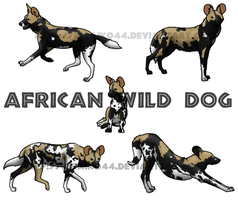 African Wild Dog by Atroxa