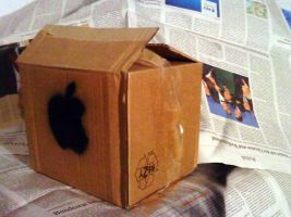 Apple box by AmineShow