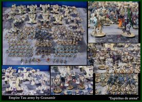 Empire Tau army by Granamir