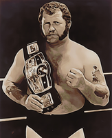 Harley Race by anubis55