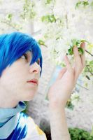 Kaito: Gentle by Nature by RhymeLawliet