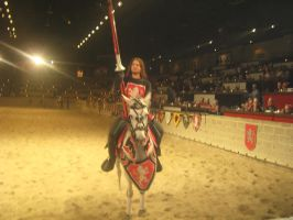 The Red Knight 1 by sasori4rock