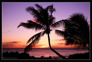 Luau Sunset... by PacIslander2