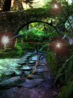 Travel of the fairies by Martijn06