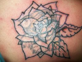 Rose coverup before by AmyLou31
