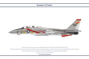 F-14A VF-114 1 by WS-Clave