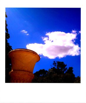 Coincidence by Alittlebitdreamer