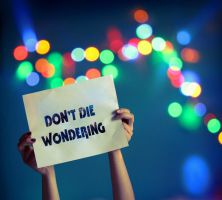 Don't Die Wondering by imbecilities