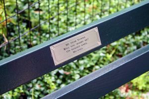 A park bench in Central Park by Cathhhhz