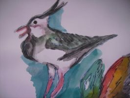 Bird painting by SatineChristian