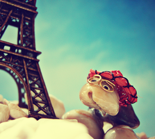 Pebbles and the Eiffel Tower by Eriline03