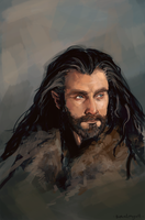 Thorin by mostlywinter