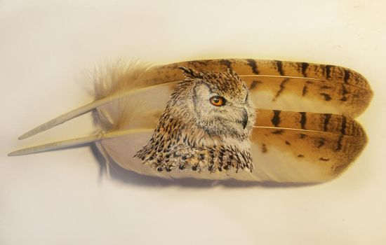 Siberian Eagle Owl Featherpainting by cola93
