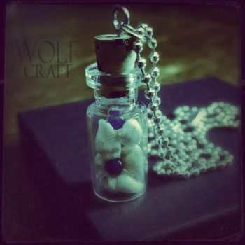 WOLF CRAFT Sea Shells and Stones Agate Necklace by wickedland
