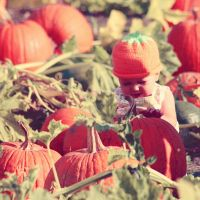 Pumpkin Patch Kid 1 by missatralissa
