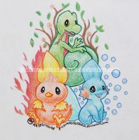 Hoenn Starters by pictureperfectsketch