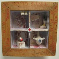 Medical Oddity Assemblage by bugatha1
