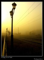 A foggy street light by kos5tas