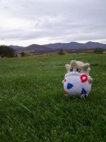 My Pokemon Ranch: Togepi by Taikxo